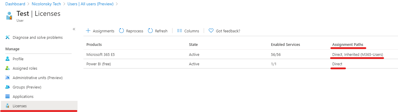 Azure AD Direct License Assignment Portal View